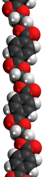 A section of a polyethylene polymer, a molecule made from many units of ethylene joined together. | Image: Wikimedia